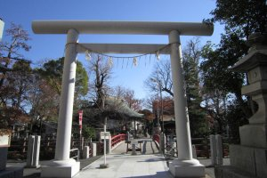 An impressive torii at one of the entrance