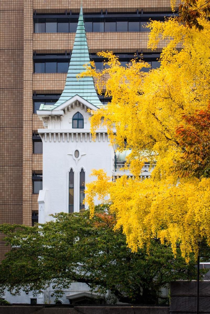 옛 교회는 노란 잎이랑 더 잘 어울린다.