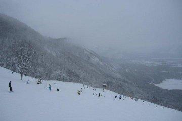 Near the top of Goryu