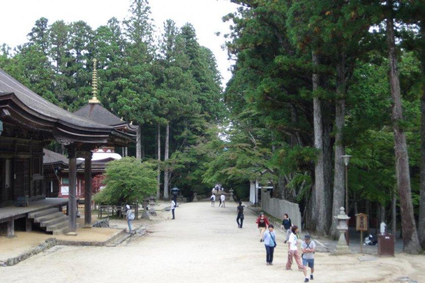 Near Konpon Daito temple in Koyasan\'s centre