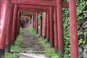 One of Koyasan's many pilgrimage routes near Daimon