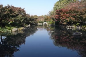 The garden at To-ji