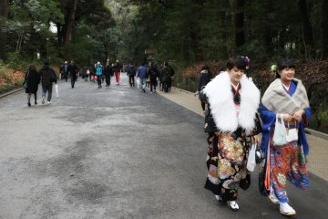 People walked from the shrine to the ward office.