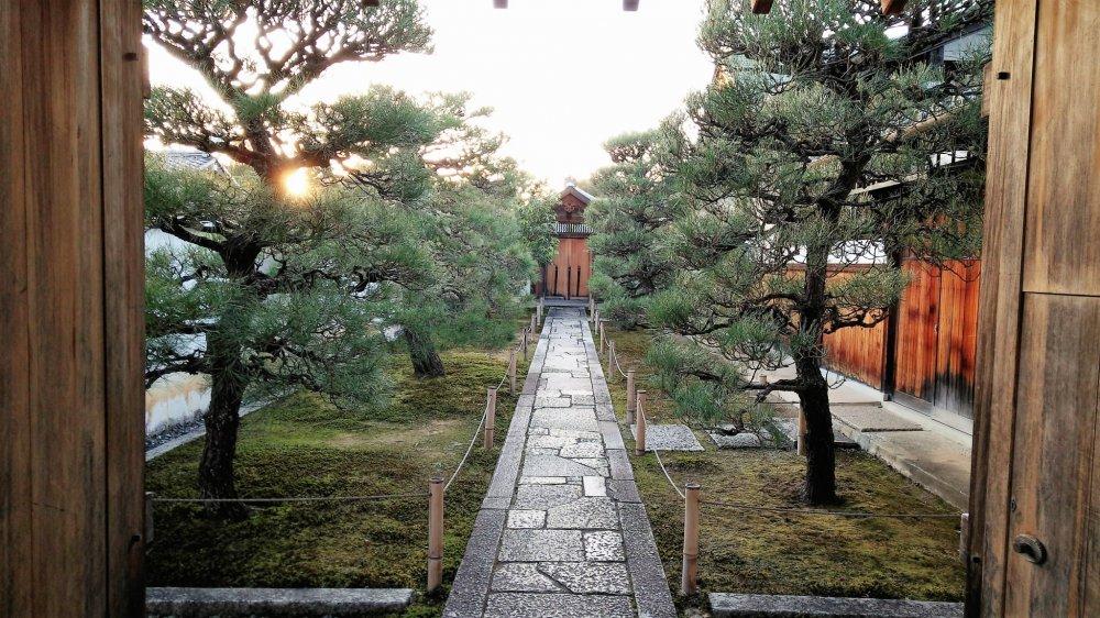 ภายในบริเวณกลุ่มวัดไดโตะคุ-จิ สวยงามและสงบร่มรื่น น่าเดินเล่น