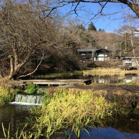 Kumobaike Pond in Karuizawa