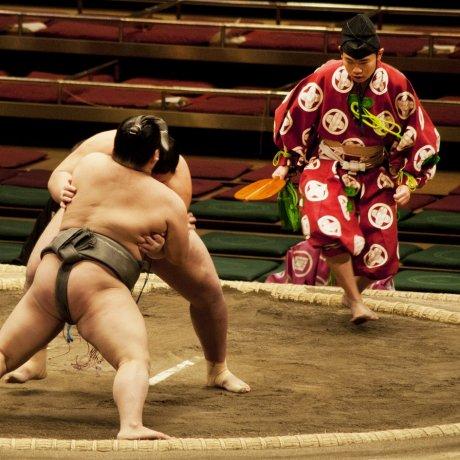 Tokyo Sumo Grand Tournament