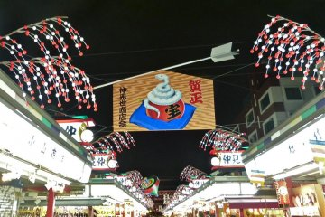 New Year's zodiac decorations-Year of the Snake