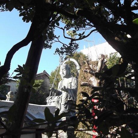 Seigan-ji Temple in Utsunomiya
