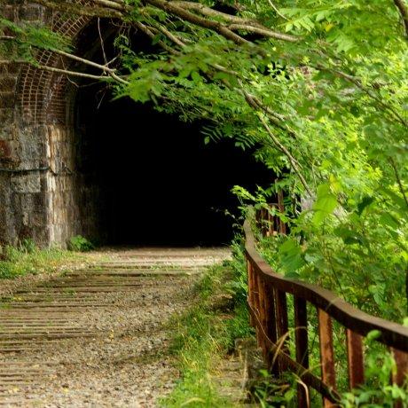 เดินป่าบนเส้นทางรถไฟที่เลิกใช้แล้วสาย Takedao