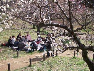 Sekelompok pengunjung yang sedang berpesta