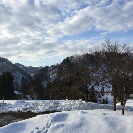 Berwisata ke Kashiwazaki