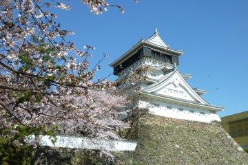 Circuits Touristiques à Fukuoka
