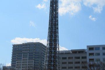 Marine Tower