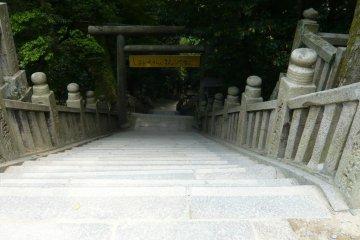 The walk back