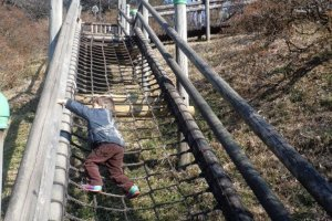 Getting to the top of the slide is fun too!