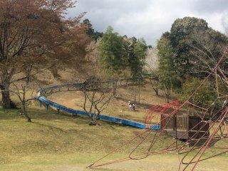 100 m slide, so long!
