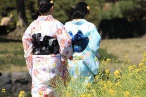 Le groupe s'est promené en kimono dans le jardin.