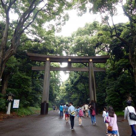 Perjalanan ke Kuil Meiji