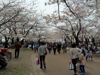 Iwate Park in Morioka