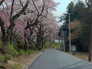 Near Hanamaki Onsen