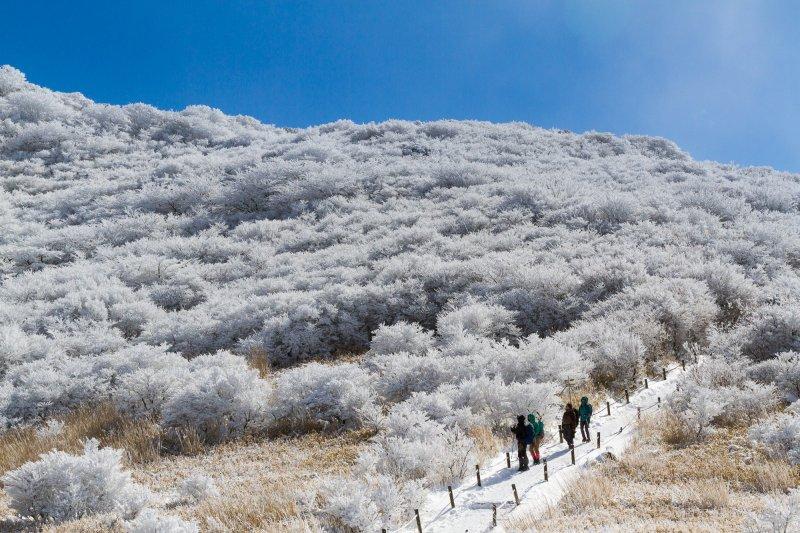 บนเส้นทางสู่ภูเขาโฮะชิโชะ