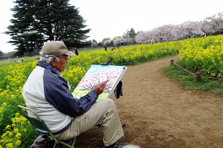 หลีกหนีจากความวุ่นวาย มาดื่มด่ำจมแช่กับดอกไม้นานาพันธ์ที่ สวน Showa Memorial Park