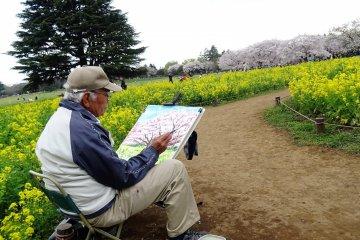 สวน Showa Memorial Park