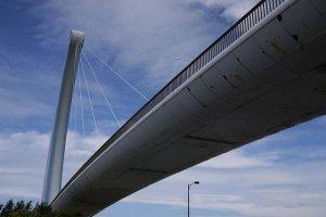 Cây cầu ở trước Aquas