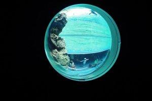 Cửa sổ tròn ở Aquas
