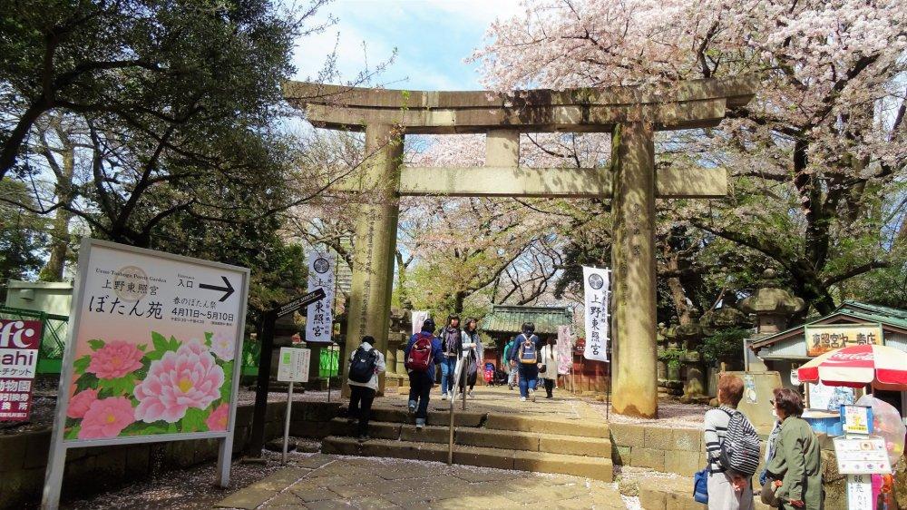 ประตูโทริของศาลเจ้าโทะโชะกุ
