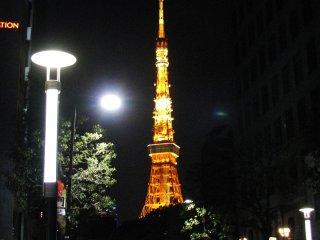 Подсвеченную башню хорошо видно издалека