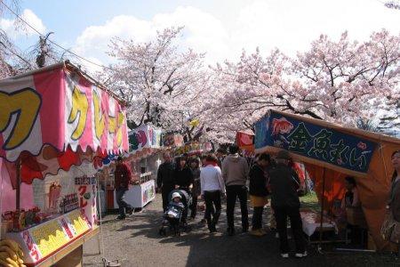Le parc de Tsuruoka
