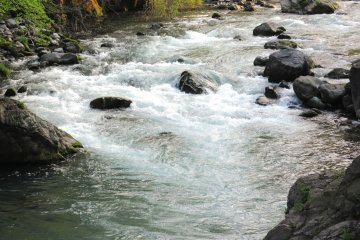 Быстрая горная река