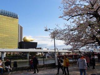 ตึกเบียร์อาซาฮิสีดำ พร้อมฟองเบียร์ยักษ์สีทอง