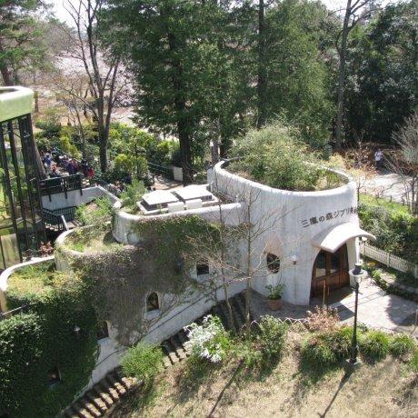 Музей студии GHIBLI, парк Инокасира