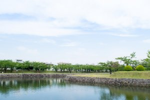 The moat and lush vegetation of Goryokaku Park.