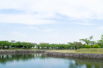 The moat and lush vegetation of Goryokaku Park.