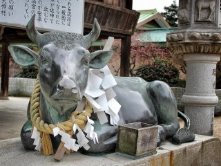 ... a metal cow ...