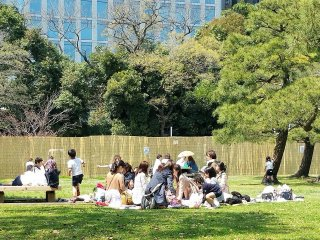 ไม่ว่าจะมาเดินเล่นชมดอกไม้ หรือกางเสื่อปิคนิก สวนแห่งนี้มีเนื้อที่กว้างพอสำหรับทุกคน
