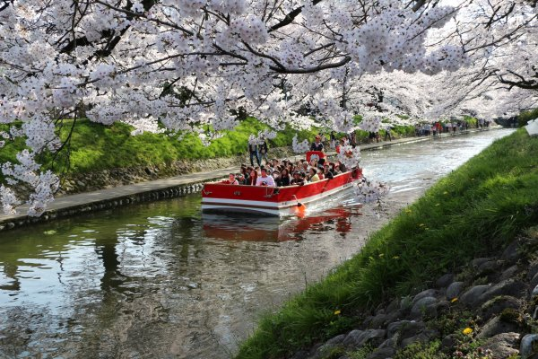 Photo credit: Matsukawa River Cruises