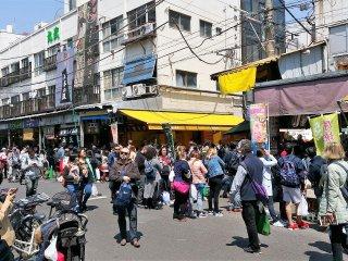 ตลาดปลาที่ใหญ่และคึกคักที่สุดในญี่ปุ่น