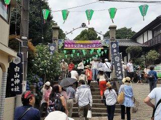 ' บุนเกียว อะจิไซ มัตซึตริ' (Bunkyo Ajisai Matsuri) ขึ้น คำว่า 'มัตซึตริ' ในภาษาญี่ปุ่นหมายถึงเทศกาล