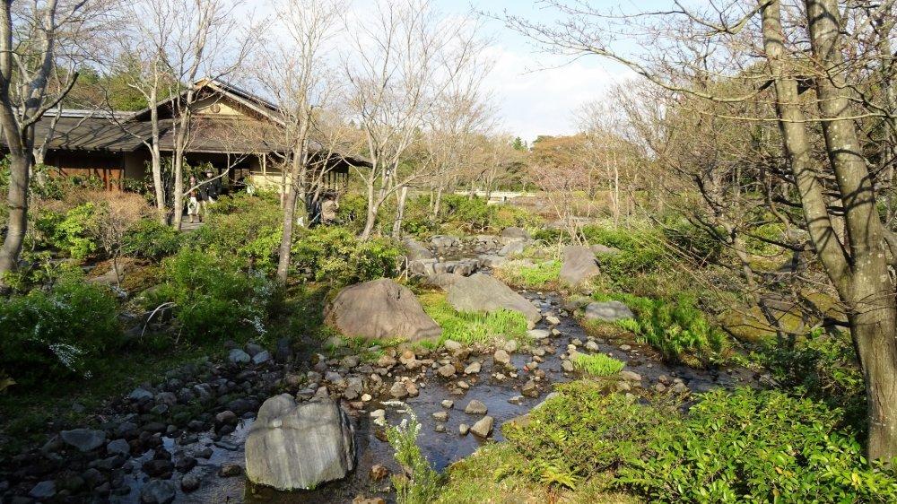 ธารน้ำที่ไหลลงสู่สระน้ำในสวน