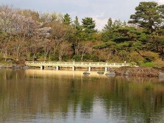สระน้ำกลางสวน