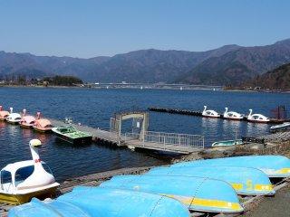 เรือหงส์จอดรอนักท่องเที่ยวที่ทะเลสาบคะวะกุชิโกะ (Kawaguchiko)
