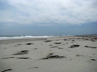 Совершенно пустынный пляж Бентендзимы