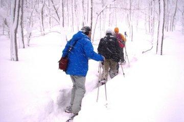 Yumiharidaira Snowshoe Trekking