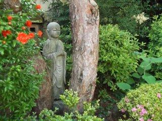 Menemukan ini di tengah pepohonan