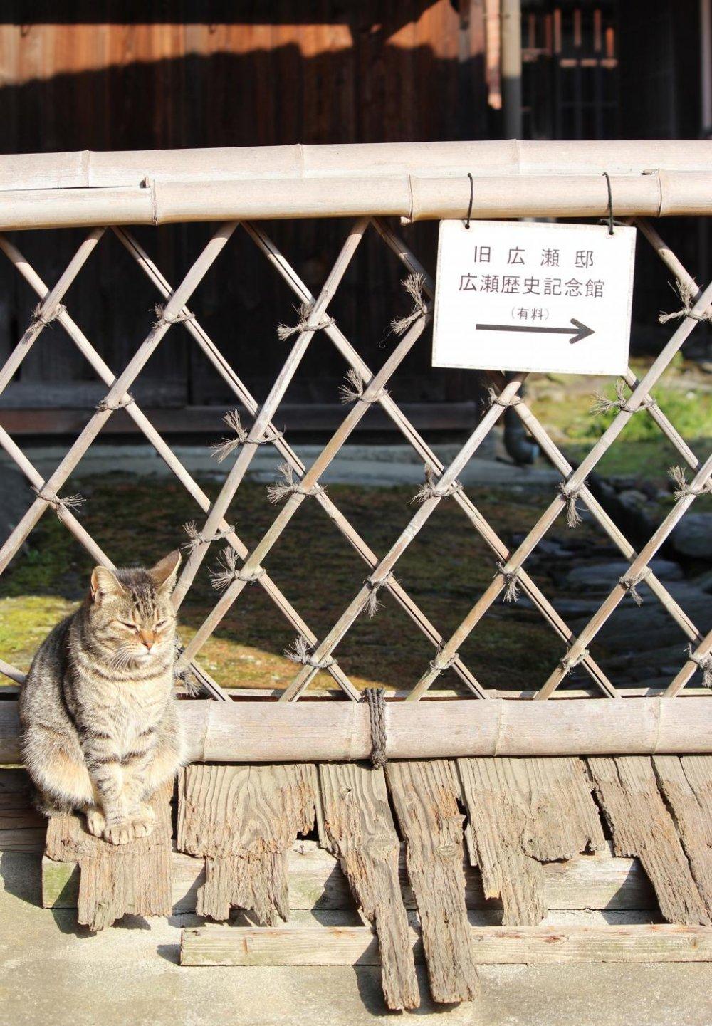 The Hirose Residence In Niihama Ehime Japan Travel Japan - Niihama map