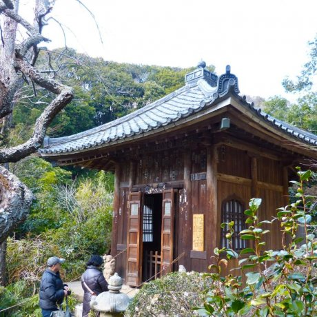 Kamakura's Zuisen-ji Temple